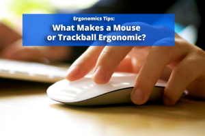 What makes a Mouse Ergonomic?